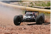 Trophy 4.6 Truggy RTR 2,4 GHz-фото 4
