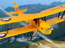 Самолет Dynam De Havilland Tiger Moth RTF 1270 мм-фото 8