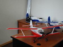 Радиоуправляемый самолет АН-2 KIT версия-фото 9