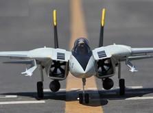 Самолет Art-Tech F-14 Tomcat импеллерный копия электро бесколлекторный 2,4GHz RTF-фото 1