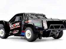 Трагги на радиоуправлении 1:24 WL Toys 4WD-фото 2